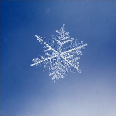 20131221132415-snowflakes14.jpg